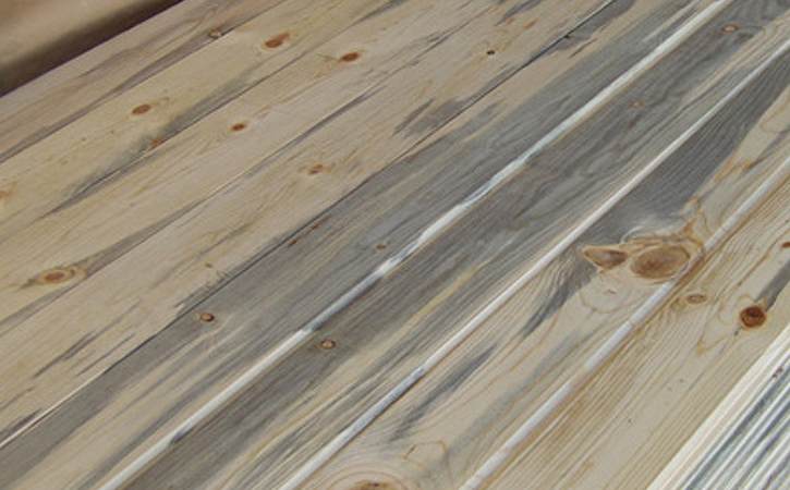 blue stain lumber